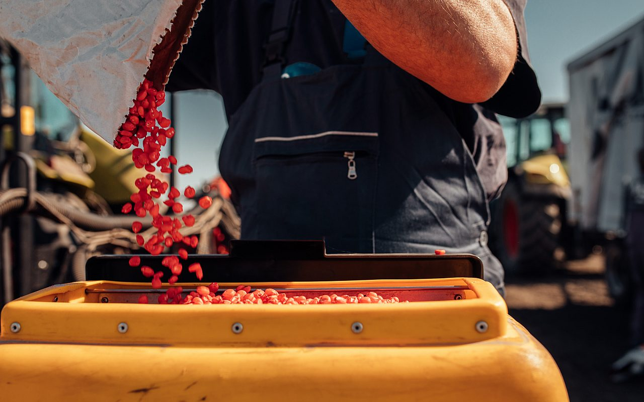 Farmer Pouring Seed