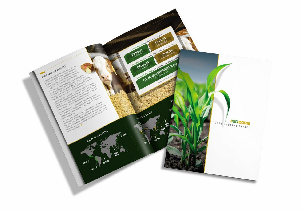 SD Corn Report
